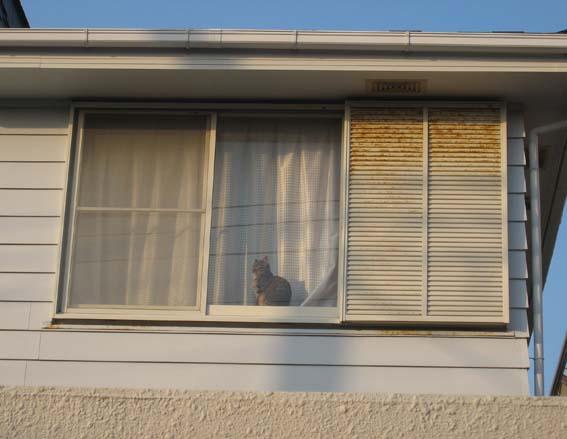 140507_窓.JPG