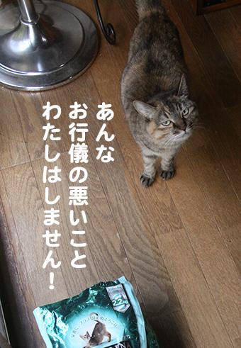 141228_えさ袋4.png
