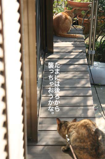130407_縁側.png