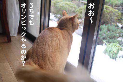 140213_雪1.png